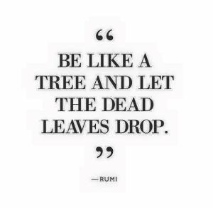 rumi dead leaves
